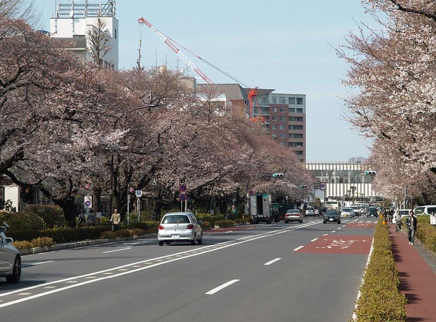 国立市の住環境用画像